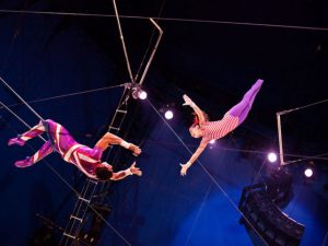 Trapeze performers. Credit to unknown photographer for amazing image.