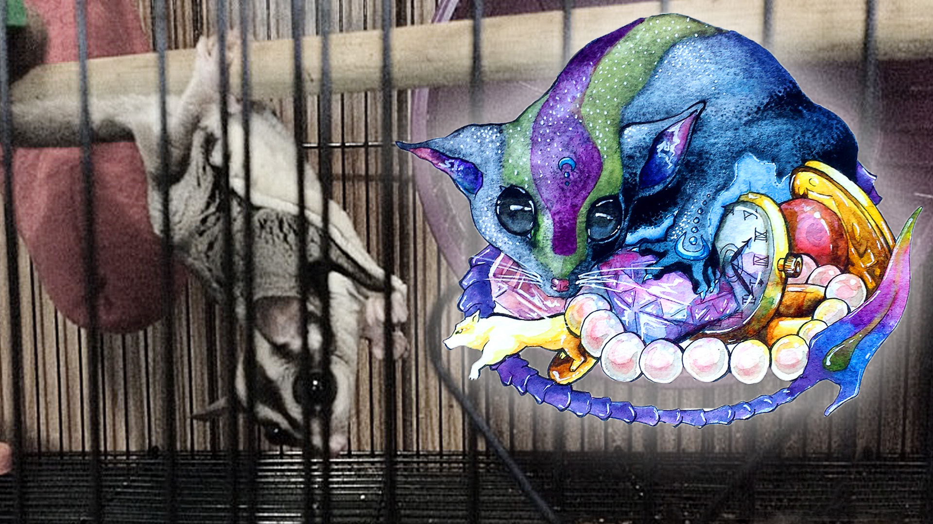 Tink, a female sugar glider hanging from one of her bars upside down in her cage, next to a illustration inspired by her of a Pathfinder monster, which resembles a blue and purple glider.
